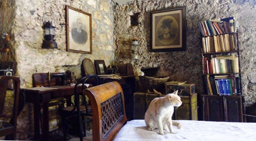 Weinkellerei mit Sammlung antiker Familienstücke in Pessada nahe Joleni Cottage