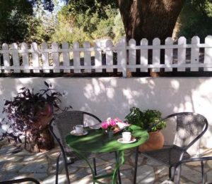 Place in the shade of the oak tree t Joleni Cottage